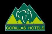 Gorillas Lake Kivu Hotel